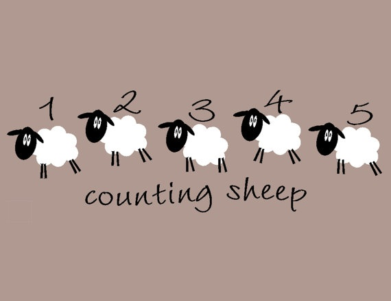 sheep numbers