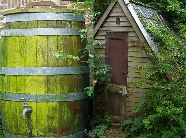 Rainwater tank and chicken coop