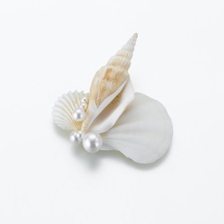 Shell Boutonniere
