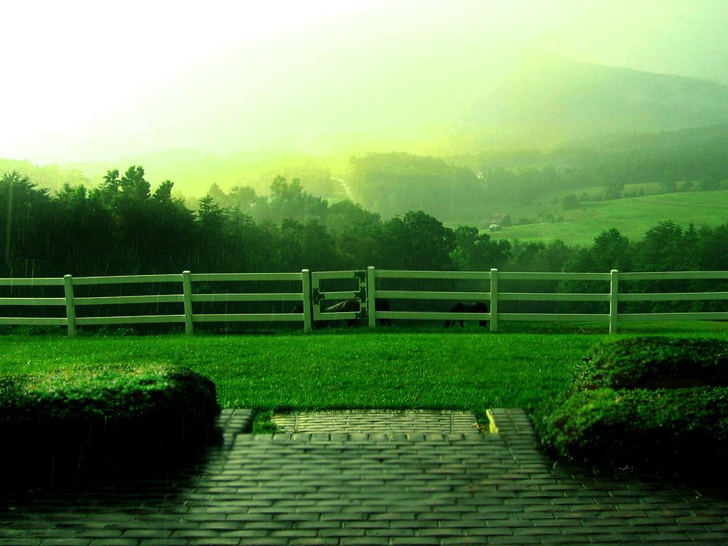 http://1.bp.blogspot.com/-a8XYWM_pvE0/TpbebMSAk_I/AAAAAAAAAEc/0xlM7g4TGTM/s1600/rain3.jpg