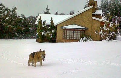 Zima w RPA, wycieczka do Mpumalangi