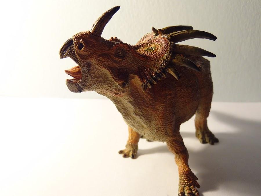 PAPO Styracosaurus and Euplocephalus 001+%25282%2529