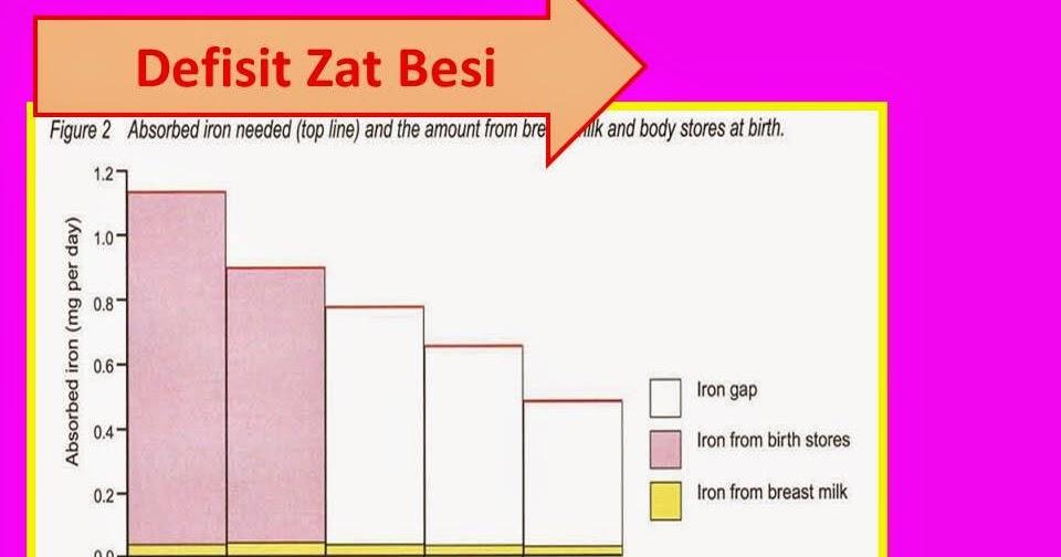 Makanan Anak Sehat: Zat Besi untuk Bayi dan Anak