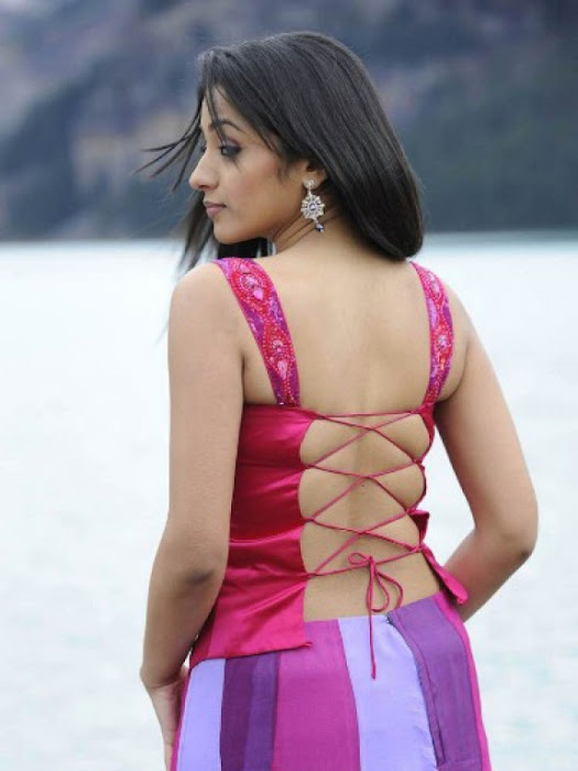 trisha in guard movie pink dress shoot song , glamour  images