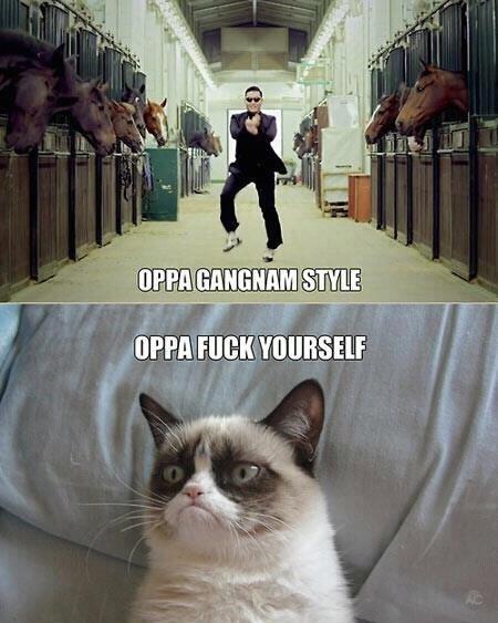 [Image: oppa-gangam-style-oppa-fuck-yourself-grumpy-cat.jpg]