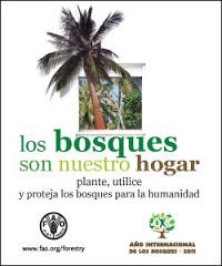 Bosques sanos,personas sanas