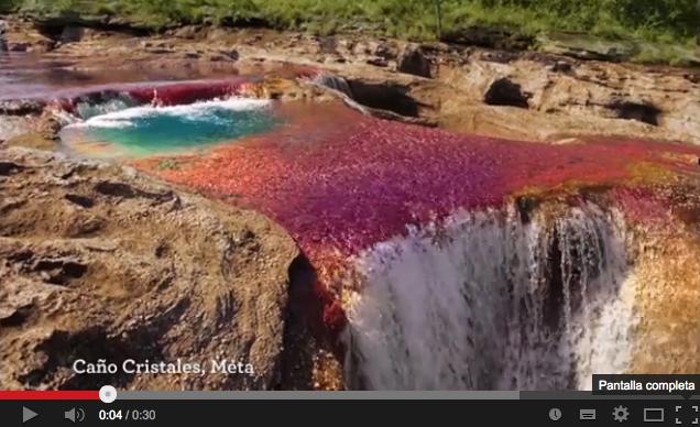 Video promocional de Caño Cristales por - Fondo de Promoción Turística (Fontur)