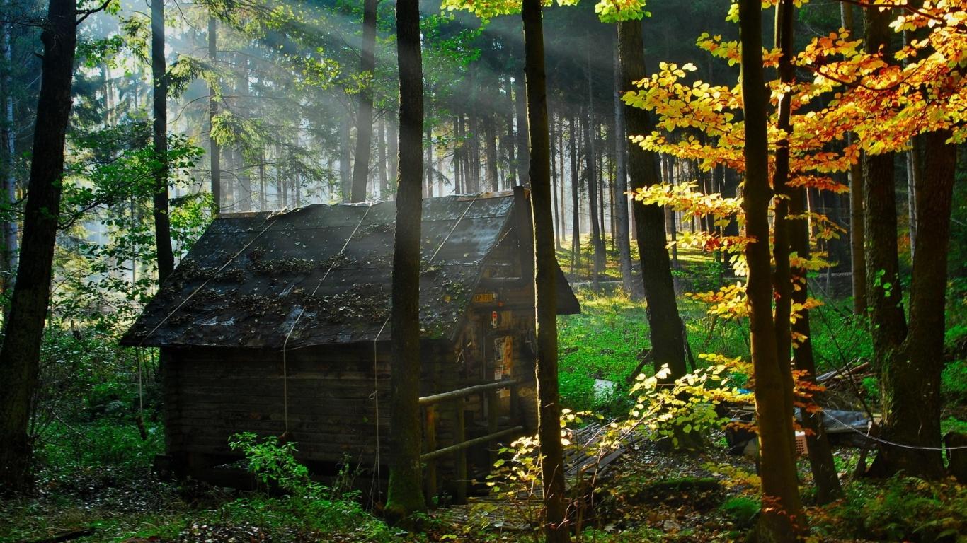 http://1.bp.blogspot.com/-a9pkyxSQe40/TkJAhCe_41I/AAAAAAAAAOA/ftPEcIjsFZw/s1600/forest-house-wallpapers_28521_1366x768.jpg