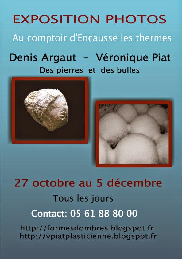 Exposition d'automne 2014 au comptoir d'Encausse