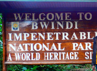 7 Days, Ugandan Gorilla Safari Bwindi and Queen Elizabeth National Park