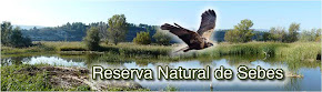 Reserva Natural de Sebes