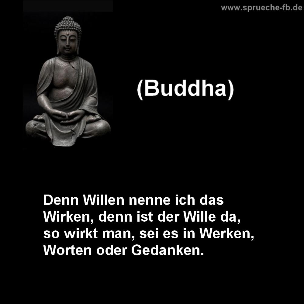 buddha sprüche | jtleigh - hausgestaltung ideen
