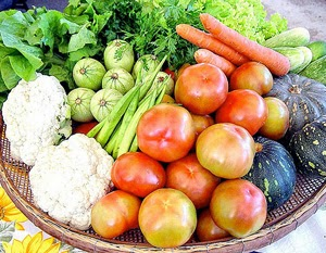 ¿Que es la seguridad alimentaria?