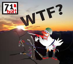 71 GRADER BOLT