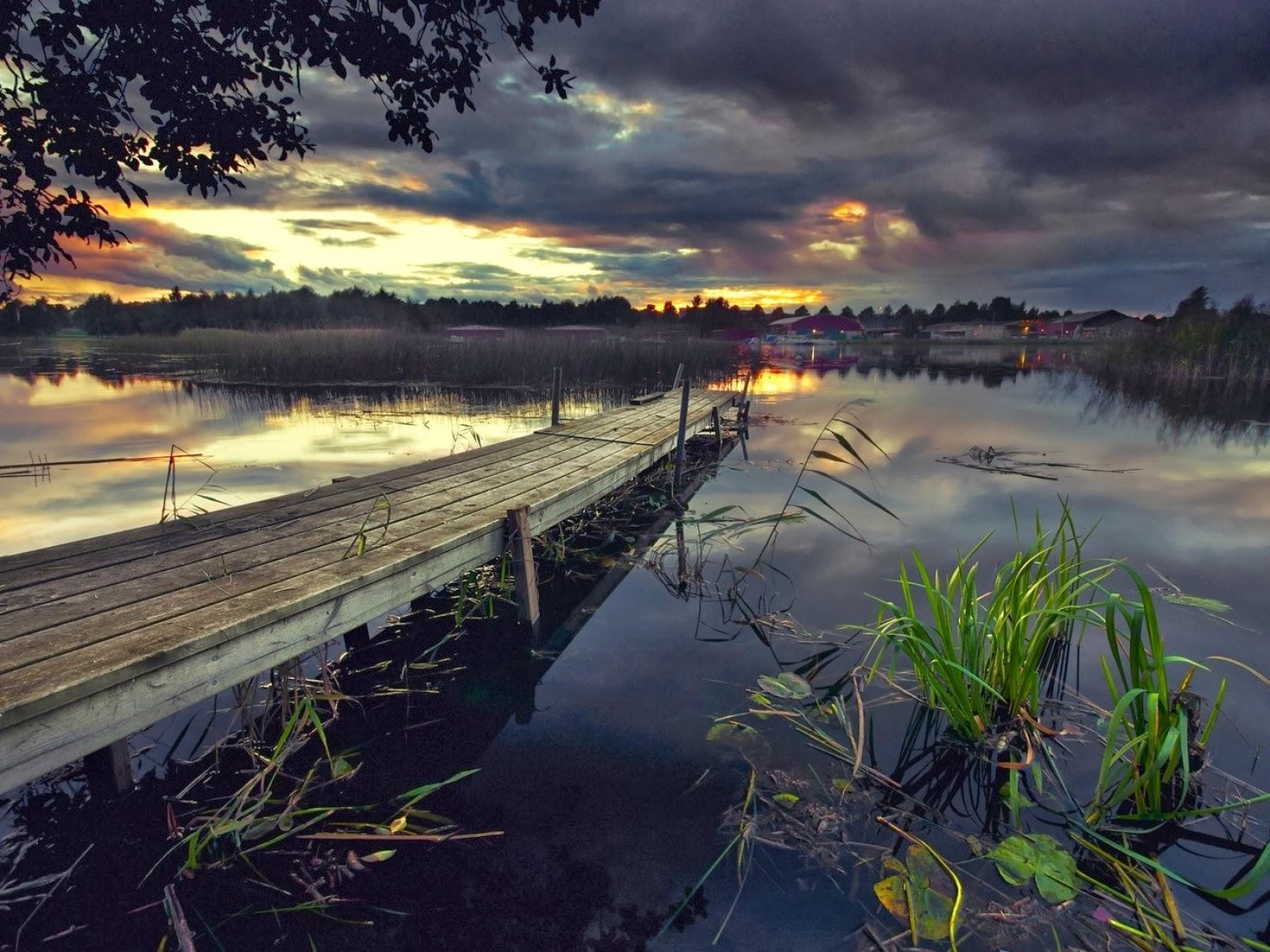 Embarcadero lago plantas & cielo