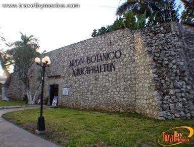 Lenguas indigenas en campeche for Jardin botanico xmuch haltun