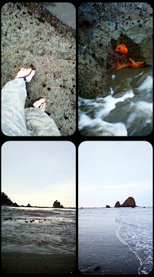 footwear coast