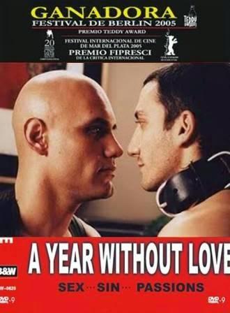 Un año sin amor, film