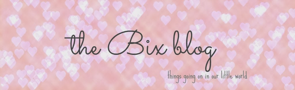 the bix blog