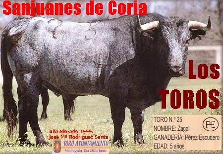 Sanjuanes de Coria. Los TOROS.