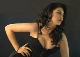 Hansika Motwani Actress Boobs Photos