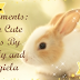 segments: my cute pets by affy and angiela