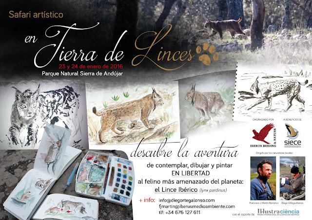 Safari Artístico EN TIERRA DE LINCES Diego Ortega Alonso ilustración de la Naturaleza Parque Natural Sierra de Andújar