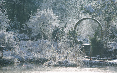 http://fotobabij.blogspot.com/2015/12/moj-ogrod-podziki-zima.html