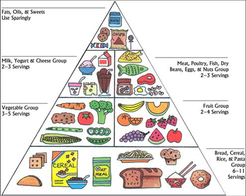 is a pyramid shaped guide of healthy foods divided into sections to ...