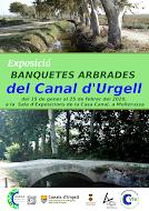 """Exposició """"BANQUETES ARBRADES"""" a la casa Canal"""