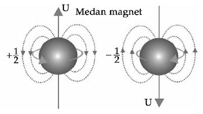 Elektron mengelilingi sumbunya menimbulkan medan magnet.