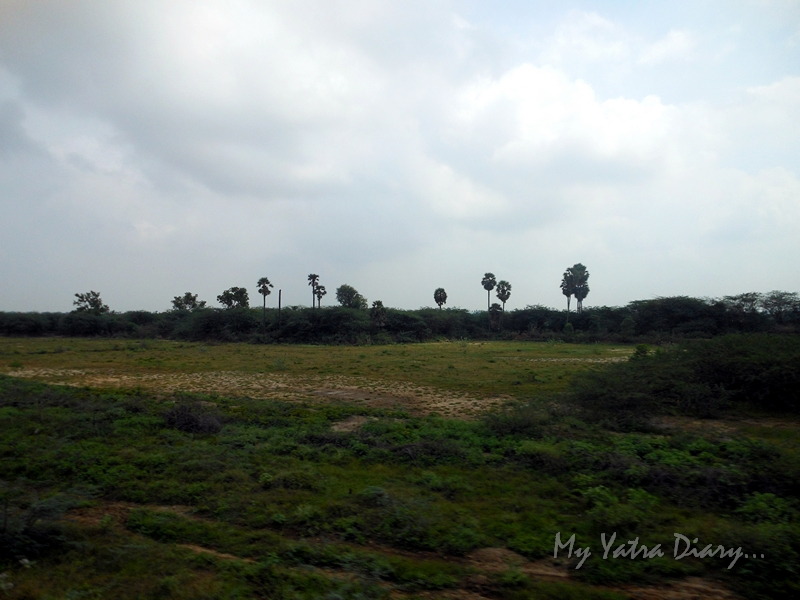 Landscape view from Rameshwaram Express from train