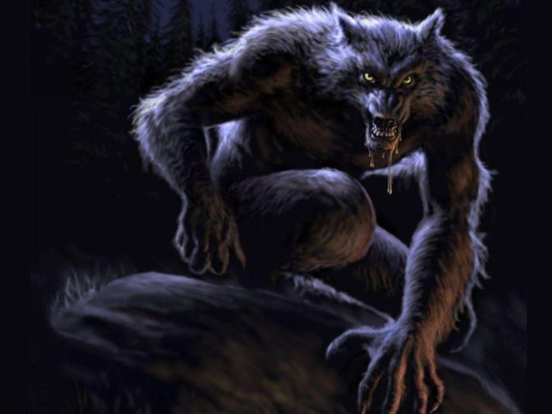 Treceava Casa: Hombre Lobo