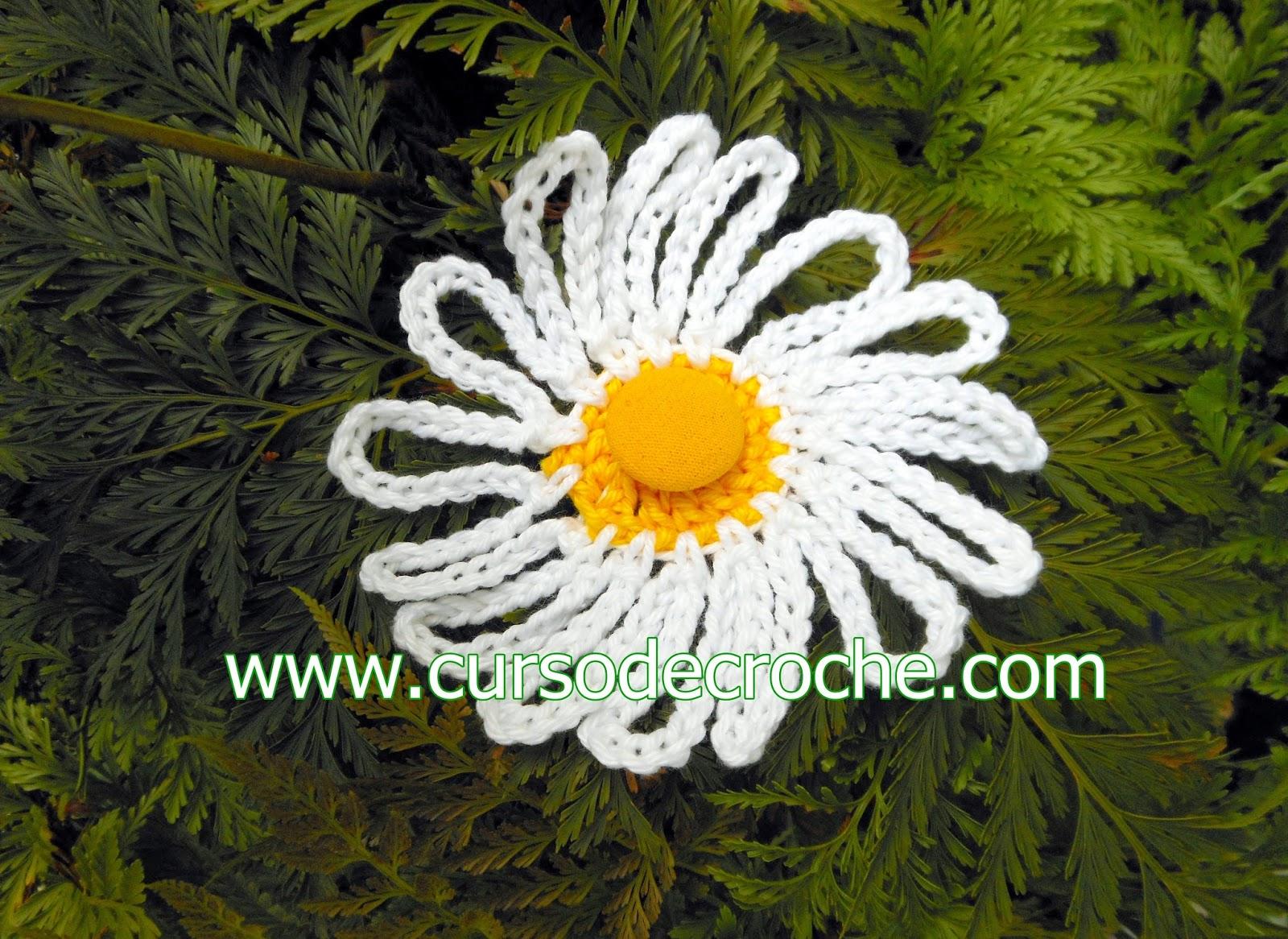 flores dvd 5 volumes com Edinir-Croche na loja curso de croche com frete gratis