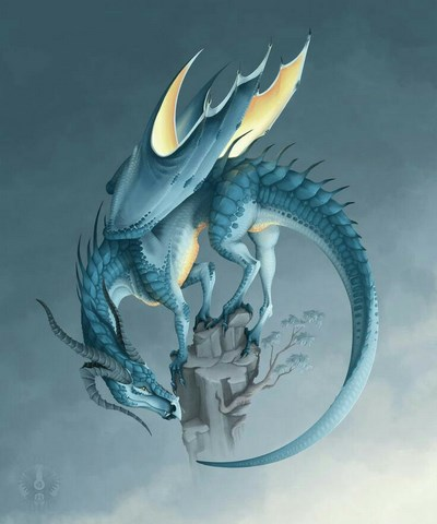 "Dal gruppo FB ""Dragon Life"""
