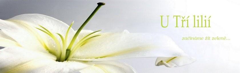 Mýdlotéka U Tří lilií