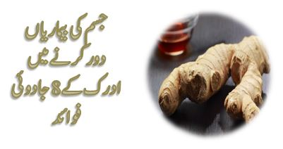 ginger health benefits for men and women in urdu