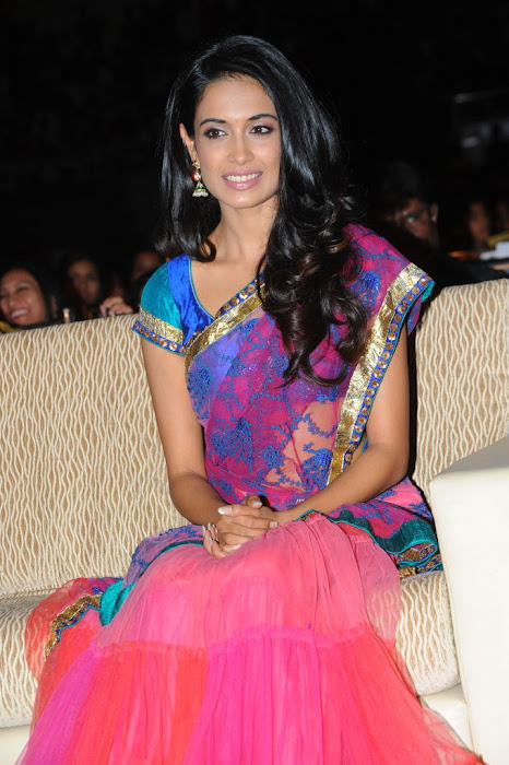 sarah jane dias at panjaa audio launch, sarah jane dias hot images