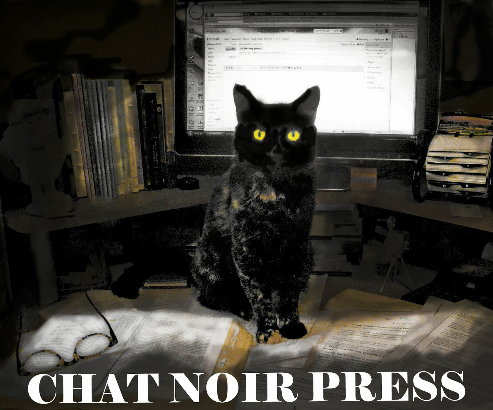 Chat Noir Press