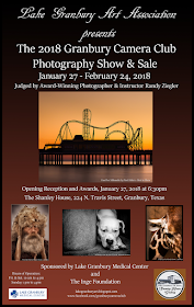 Photography Show Poster