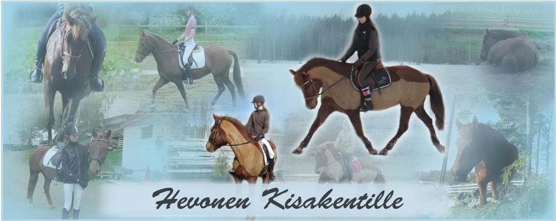 Hevonen kisakentille