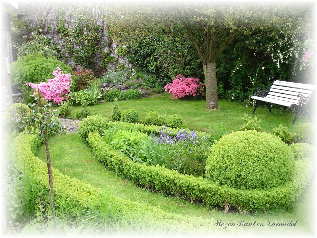 Rozen kant en lavendel mei de tuin op zijn mooist - Alle tuin ...