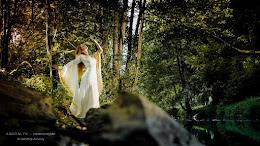 Robe de mariée médiévale OR