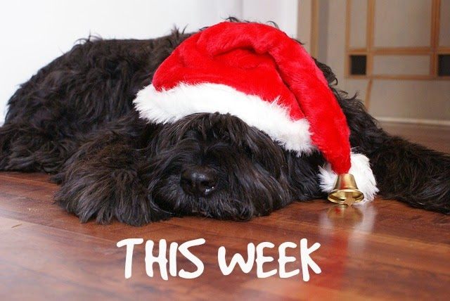 This Week @ Your Library... 12/22/15