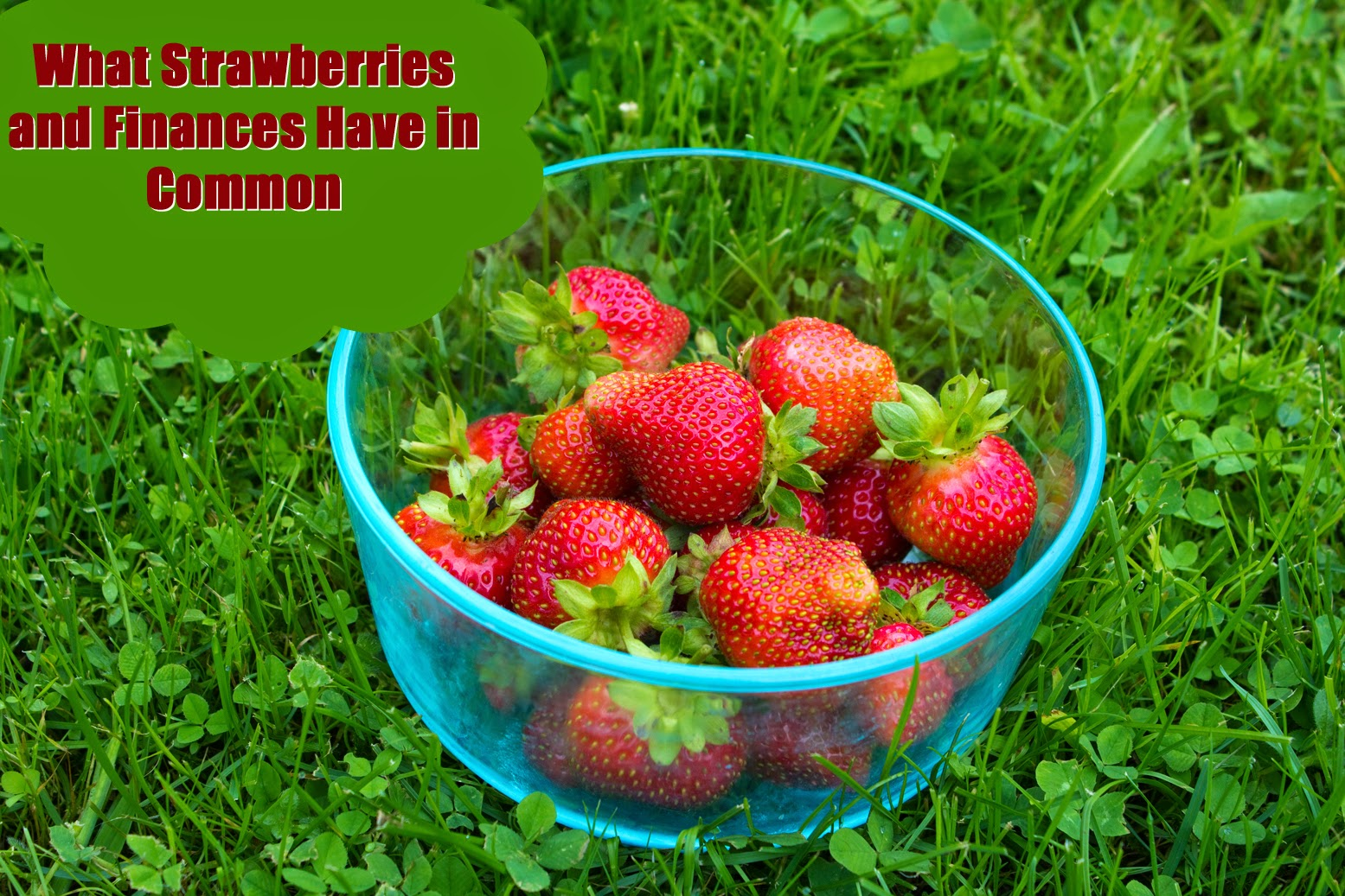 What Strawberries And Finances Have In Common