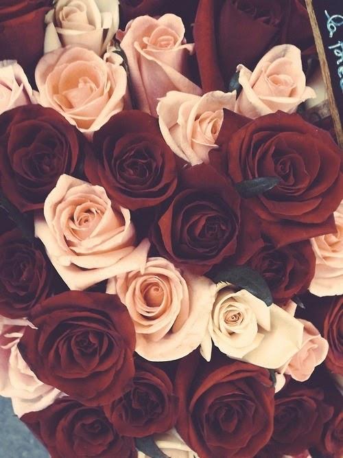 Sfondi Tumblr Rose