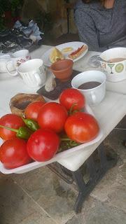 Hortalizas de la señora Maruja en Trévias, Asturias