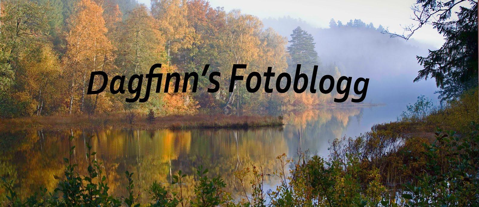 Dagfinn's fotoblogg