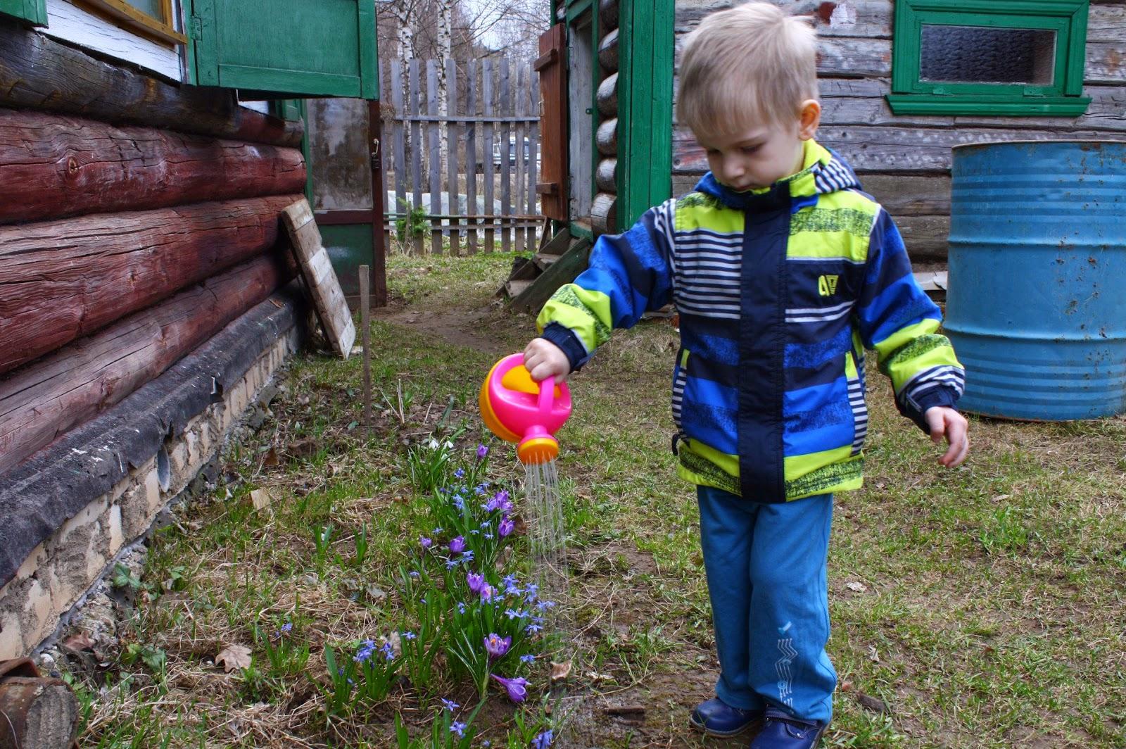 Малыш поливает цветы в саду