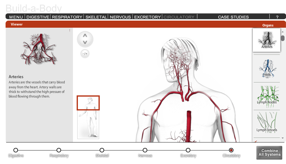 Educational Technology Guy Build A Body Very Cool Interactive